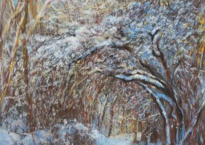 Der Werderpark im Winter