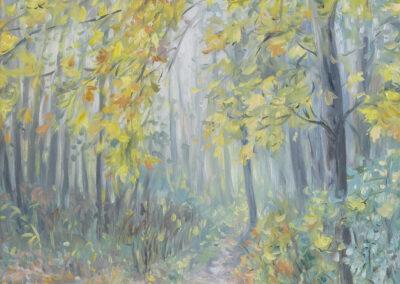 Der Herbstweg am Plessower See
